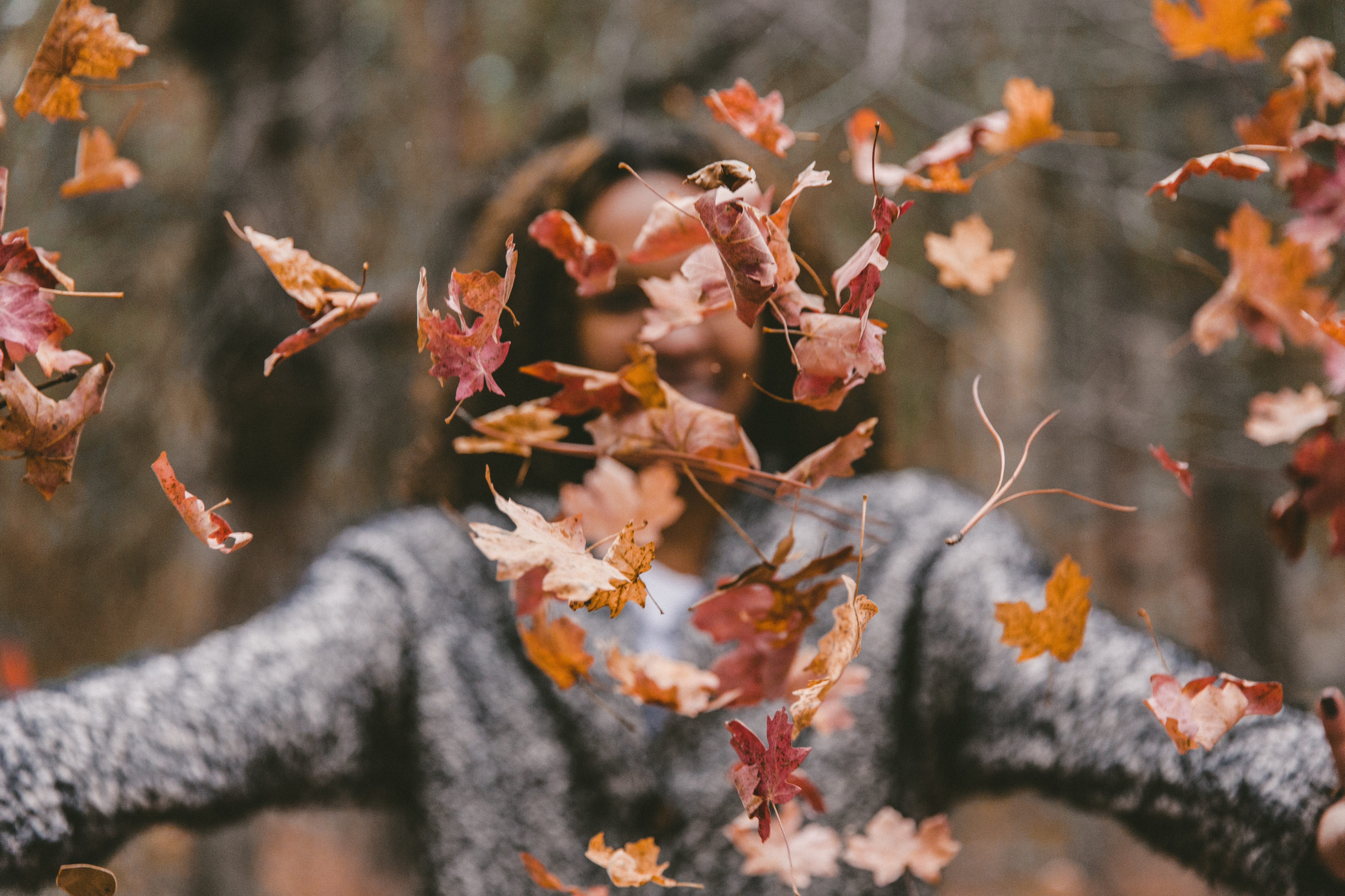 Why Autumn Might Be the Right Time to Find a Therapist