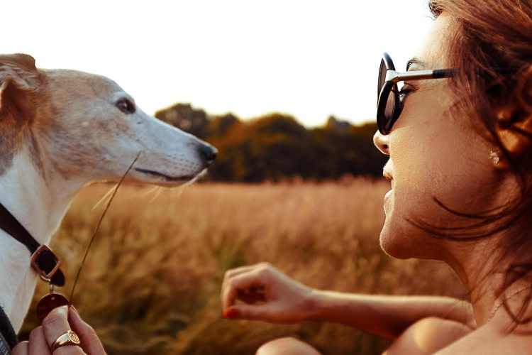 Pet Bereavement: Why It's Never 'Just An Animal'