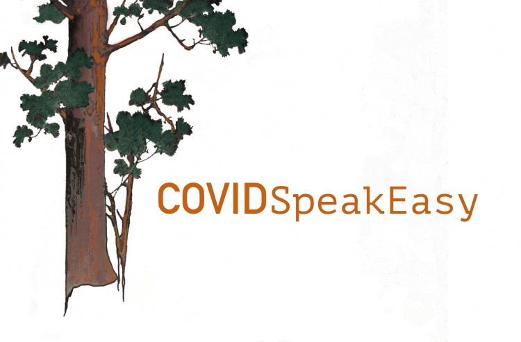 COVIDSpeakEasy: Providing Support to Bereaved Partners